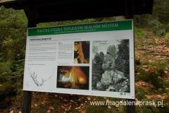 informacja o Jaskini Teplickiej - niestety jakini nie można zwiedzać
