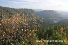 widok na okolicę z tarasu widokowego Zamku Strmen