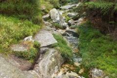 szlak niebieski w pewnym momencie zamieniła się w wartki strumień