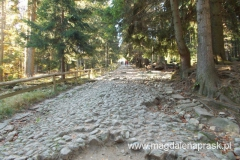 droga na Halę Szrenicką