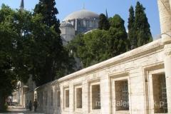 w ogrodach meczetu Suleymaniye Camii