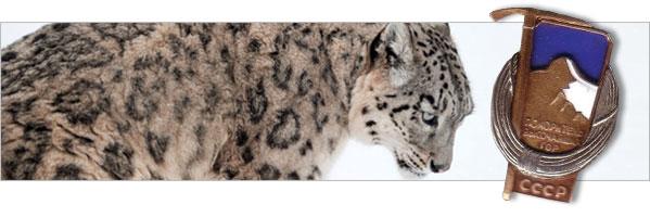 Śnieżna Pantera - ssak i prestiżowe odznaczenie wysokogórskie...