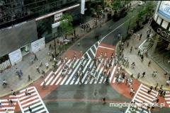 skrzyżowanie w Shibuya - dzielnicy Tokio - tu pasy dla pieszych przebiegają nawet po skosie