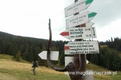 oznaczenia szlaków przed schroniskiem na Hali Mizowej