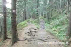 zejście czerwonym szlakiem w kierunku Przełęczy Glinne