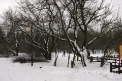 Wielkanoc 2013 czyli spacer na nartach biegowych po lesie