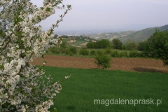 w Macedonii już jest piękna wiosna