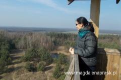 z wieży widokowej roztacza się wspaniała panorama terenów Wielkopolskiego Parku Narodowego, lasów Nadleśnictwa Konstantynowo, zabudowań miasta Mosina i miasta Puszczykowa, a także przy sprzyjających warunkach atmosferycznych miasta Lubonia i Poznania