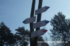 na terenie Wielkopolskiego Parku Narodowego jest 5 szlaków turystycznych o łącznej długości 85 km