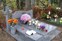 na jednym z poznańskich cmentarzy