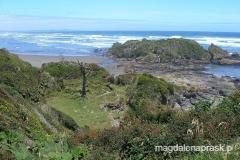 Chiloe Parque Nacional