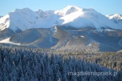 panorama na Tatry z Głodówki