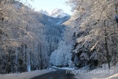 drogą w stronę Łysej Polany - zima w Tatrach jest piękna