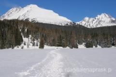 zimą ścieżka spacerowa prowadzi przez środek zamarzniętego jeziora