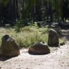 Kamienne Kręgi – Grzybnica i Borkowo